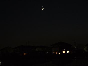 宵の明星 momoko.jpg